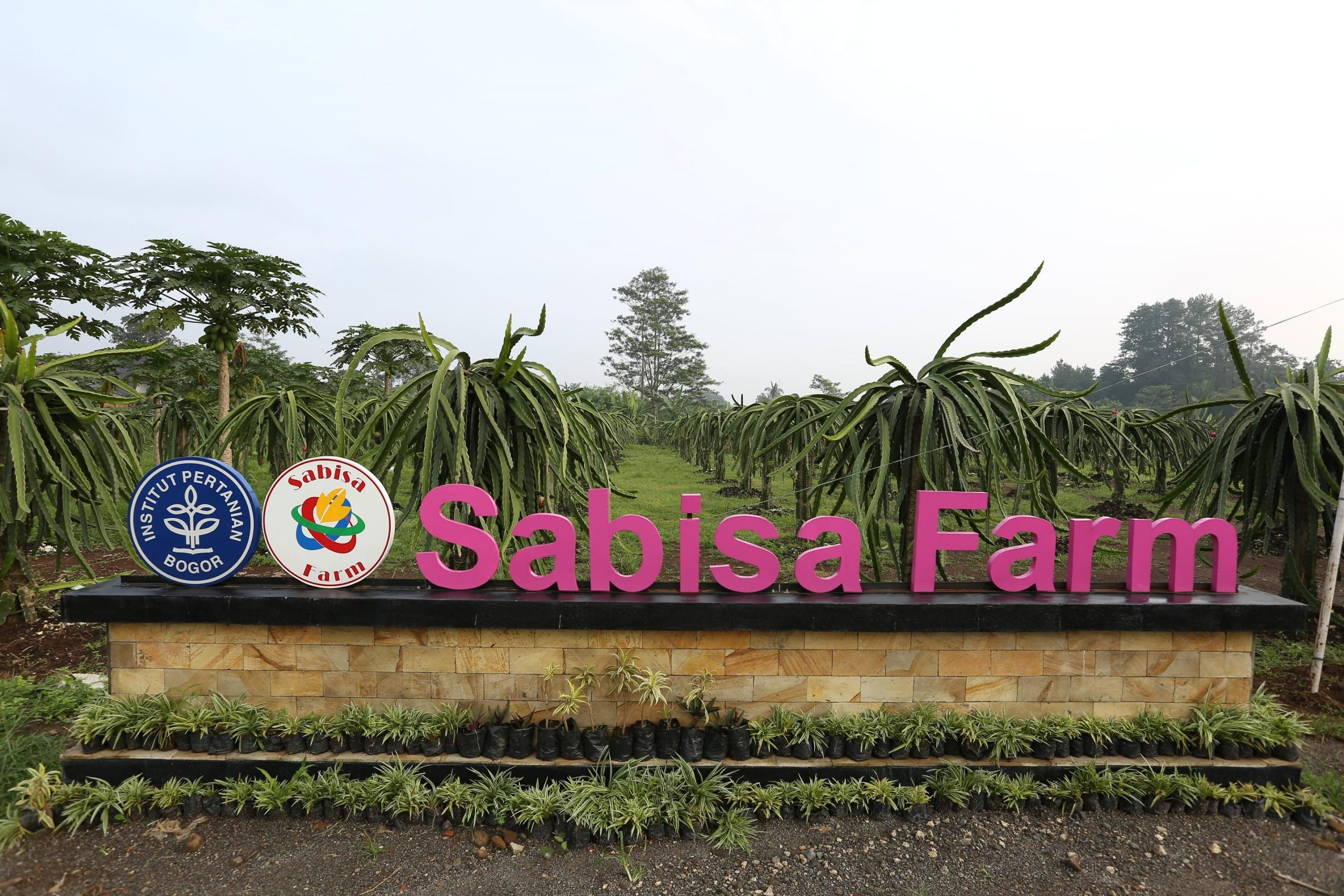 Lokasi Program Sabisa Farm